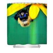 004 Sleeping Bee Series Shower Curtain