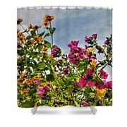 004 Summer Air Series Shower Curtain