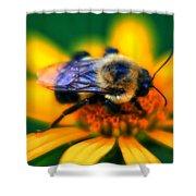 005 Sleeping Bee Series Shower Curtain
