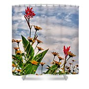 005 Summer Air Series Shower Curtain