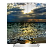 006 In Harmony With Nature Series Shower Curtain