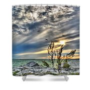 008 In Harmony With Nature Series Shower Curtain