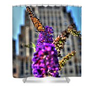 009 Making Things New Via The Butterfly Series Shower Curtain