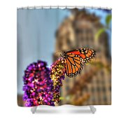 010 Making Things New Via The Butterfly Series Shower Curtain