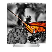 014 Making Things New Via The Butterfly Series Shower Curtain