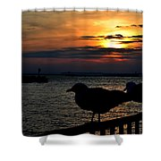 015 Sunset Series Shower Curtain