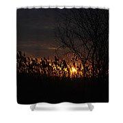 04 Sunset Shower Curtain