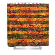 0427 Abstract Thought Shower Curtain