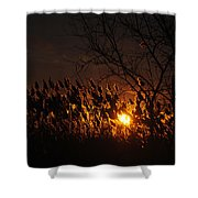 06 Sunset Shower Curtain