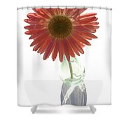 0645a2-1 Shower Curtain