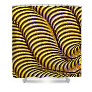 0647 Abstract Thought Shower Curtain