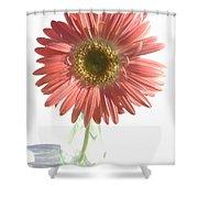0653a1-2 Shower Curtain