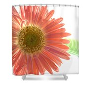 0660a1 Shower Curtain