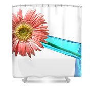 0661a-006 Shower Curtain
