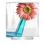 0661a1-2 Shower Curtain