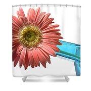 0662a-2 Shower Curtain