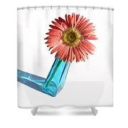 0663a2 Shower Curtain