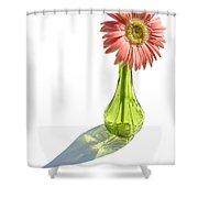 0665a1-1 Shower Curtain