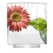 0666a-1 Shower Curtain