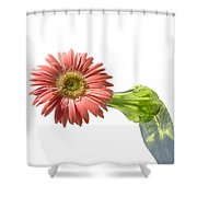0666a Shower Curtain