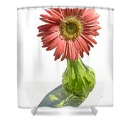 0667a-1 Shower Curtain