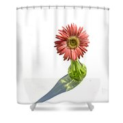0667a Shower Curtain