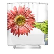 0668a-1 Shower Curtain