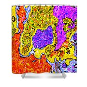 0673 Abstract Thought Shower Curtain