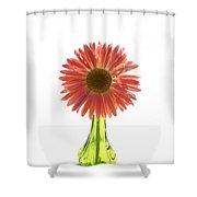 0676a Shower Curtain