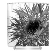0688c-016 Shower Curtain