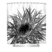 0688c-022 Shower Curtain