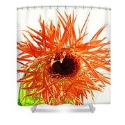 0690c-004 Shower Curtain