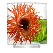 0690c-005 Shower Curtain