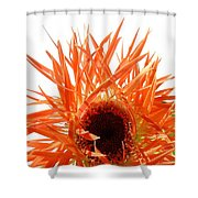 0690c-010 Shower Curtain