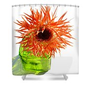 0690c-015 Shower Curtain