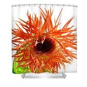 0690c-017 Shower Curtain
