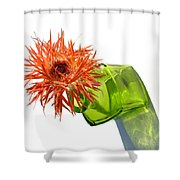 0694c Shower Curtain