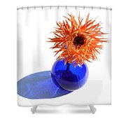 0697c Shower Curtain