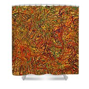 0700 Abstract Thought Shower Curtain