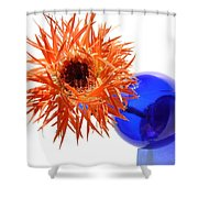 0701c Shower Curtain