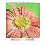 0724c1-001 Shower Curtain