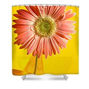 0730c2-002 Shower Curtain