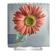 0738 Shower Curtain