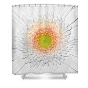 0810-7 Shower Curtain