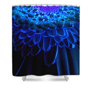 0814a3-003 Shower Curtain