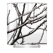 0920c1 Shower Curtain