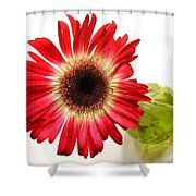 2193c-001 Shower Curtain