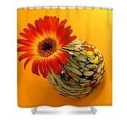 2332c-001 Shower Curtain