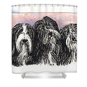 3 Bearded Ladies Shower Curtain