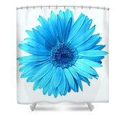 5552c6-003 Shower Curtain